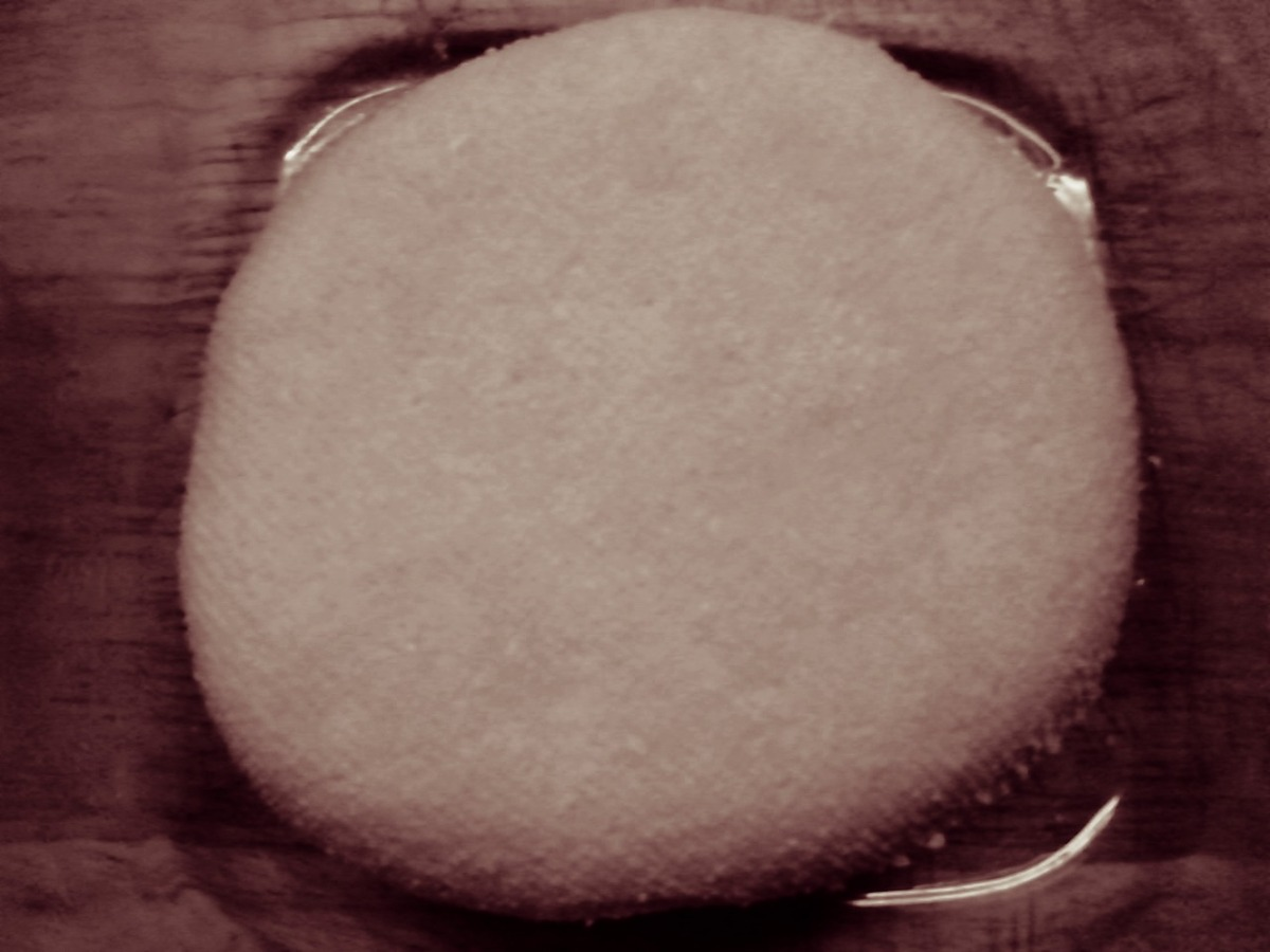 The Amazing Almond Cheese / Чудесното сирење од бадеми